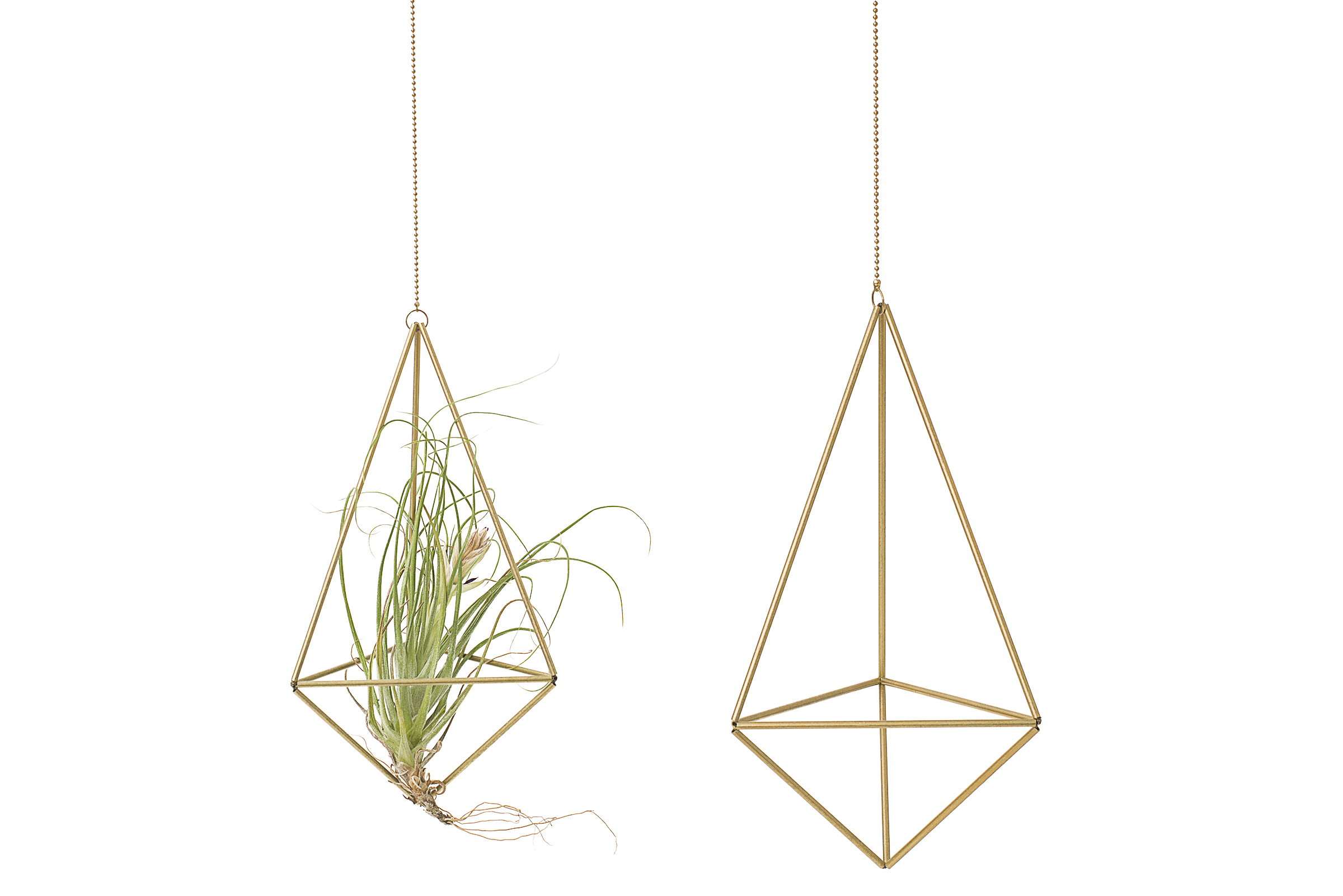 Hanging Brass Plant Holder